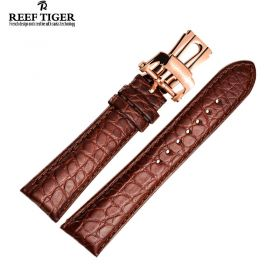 Reef Tiger Brown Alligator Strap