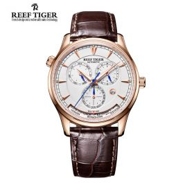 Artist Geographer World Time with Day Date Month White Dial Rose Gold Watch