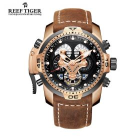 Aurora Concept Complicated Dial Rose Gold Case Brown Leather Watch