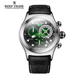 Aurora Dragon Black/Green Dial Steel Case Quartz Watch